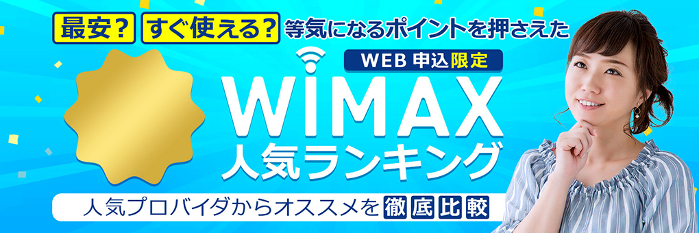 WiMAX King